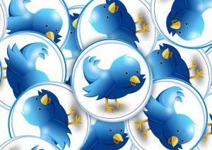 Twitterロゴ、MMPS