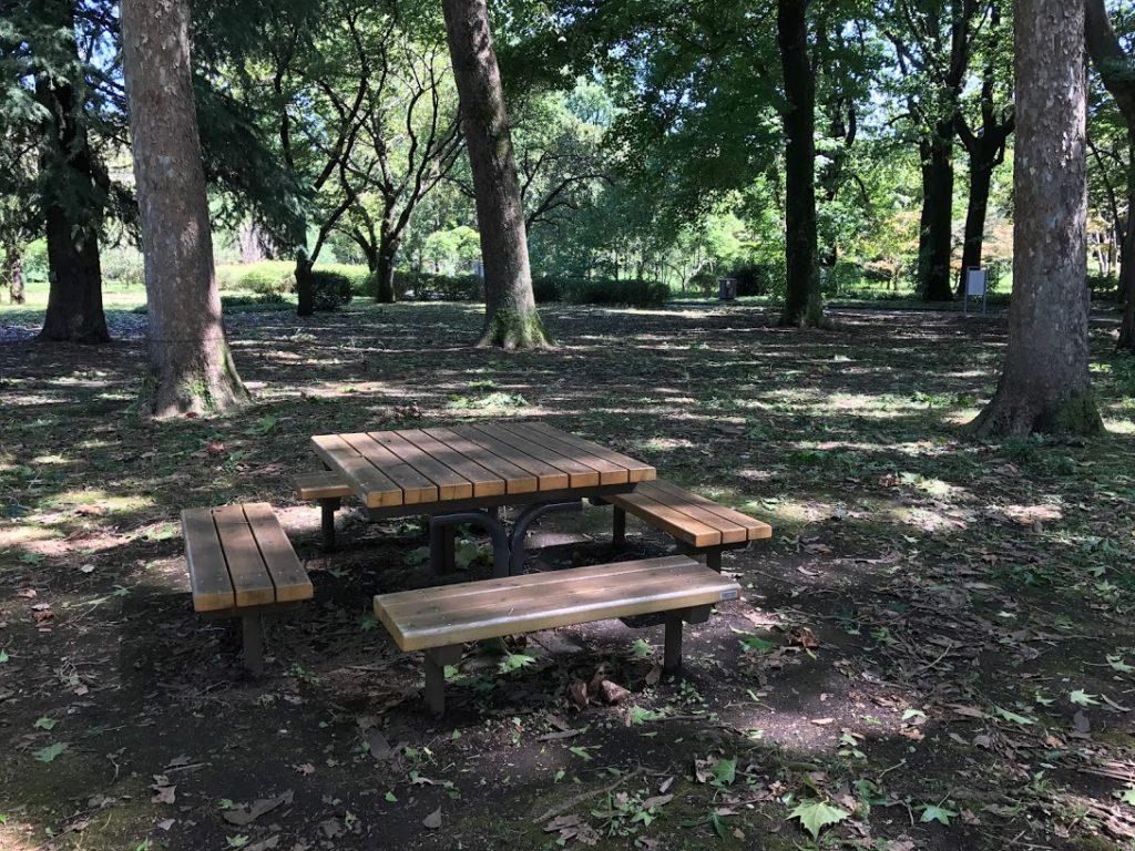 神代植物公園 椅子