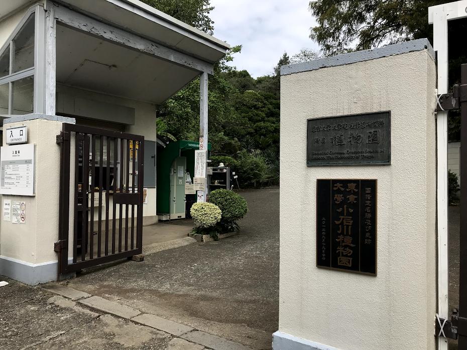 小石川植物園 正面 入り口