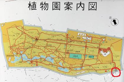 小石川植物園 正面入口