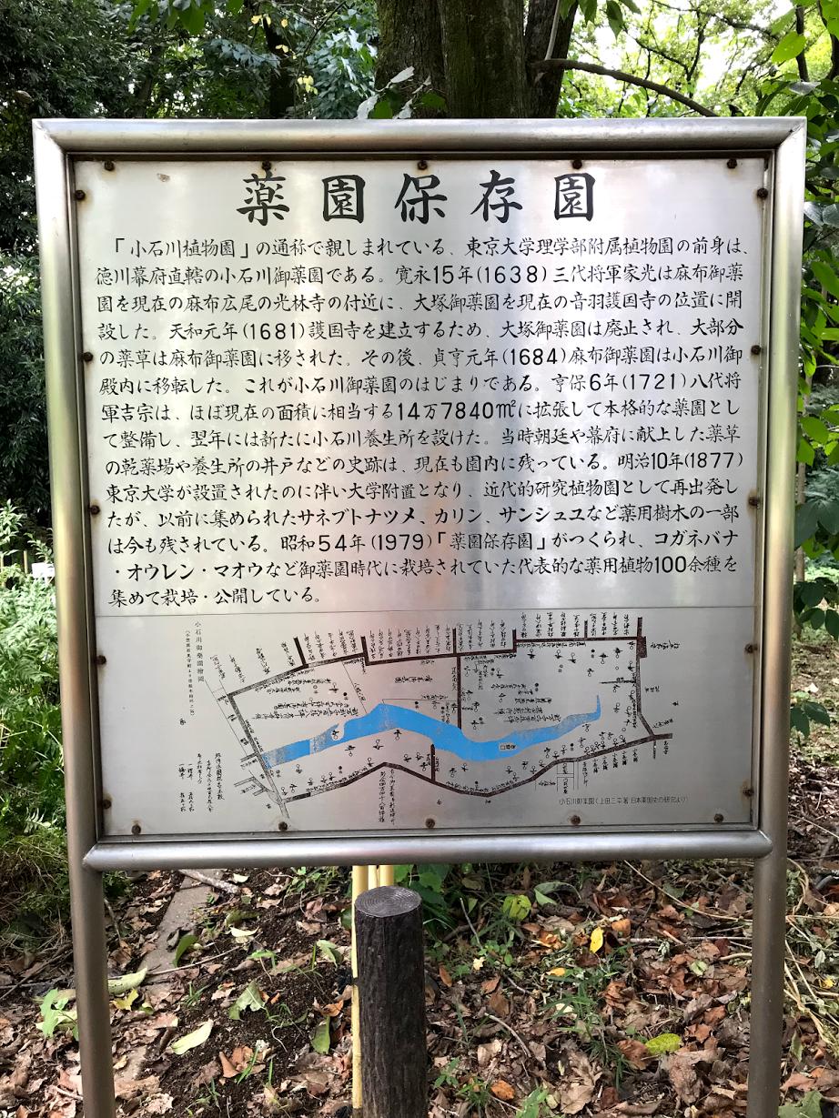 小石川植物園 薬園保存園