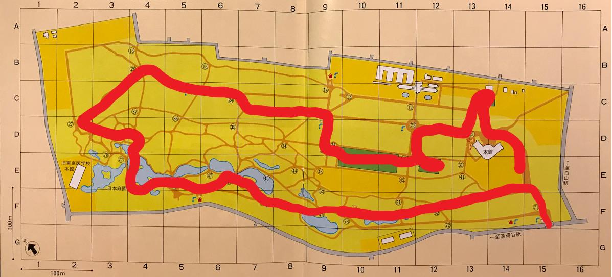 小石川植物園 地図