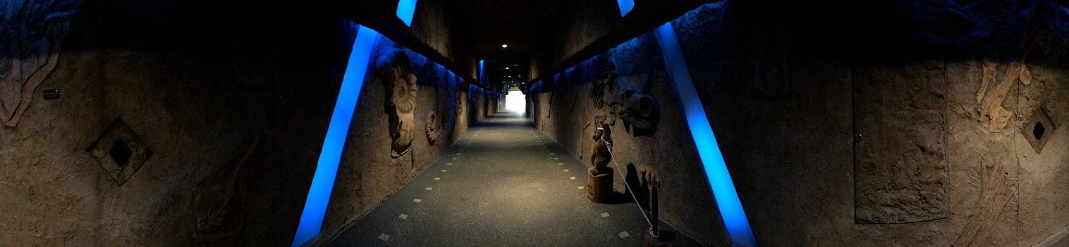 東山植物園 星ヶ丘門 トンネル