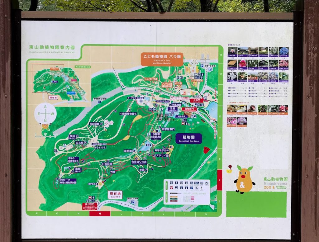 東山植物園 地図