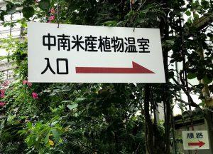 東山植物園 温室