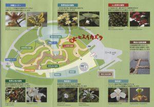 新宿御苑 大温室 説明