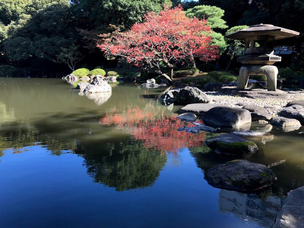 古河庭園 日本庭園