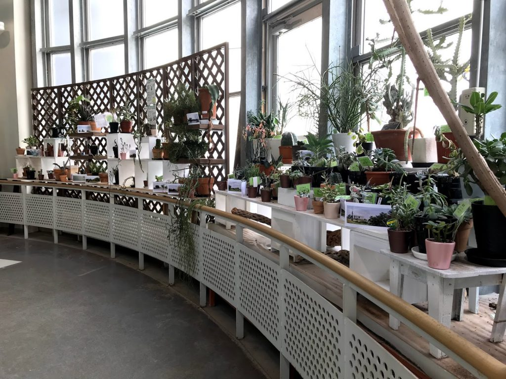 渋谷区ふれあい植物センター 2F