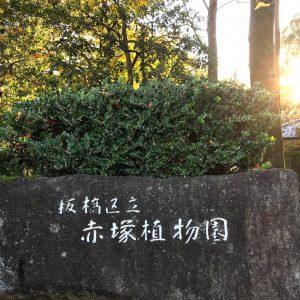 赤塚植物園 入り口 標識
