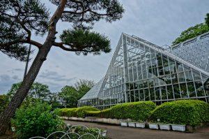 東京都薬用植物園 温室