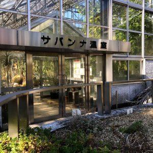 筑波実験植物園 サバンナ温室