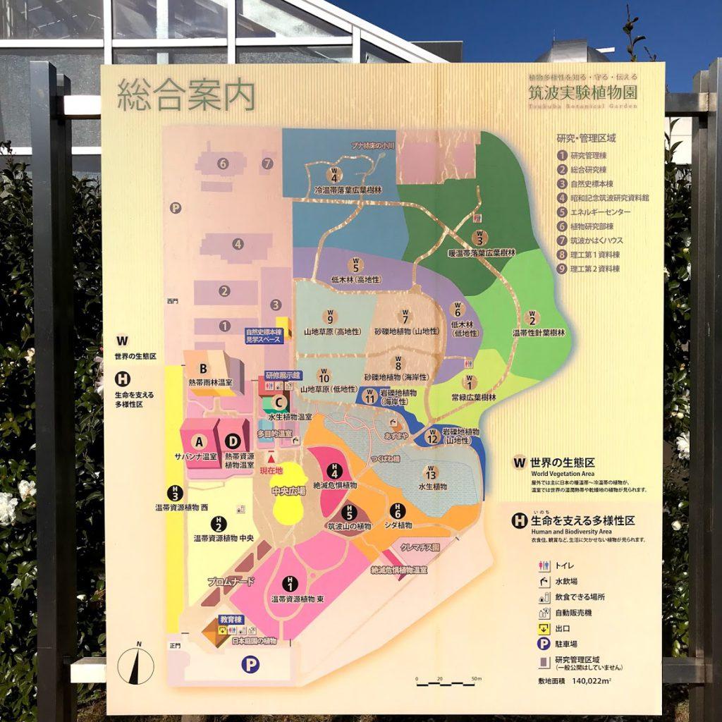 筑波実験植物園 案内図