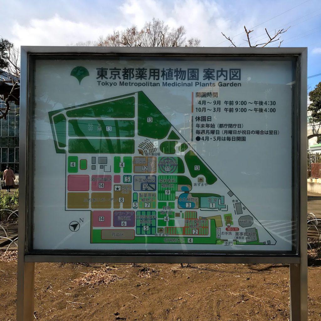 東京都薬用植物園 案内図