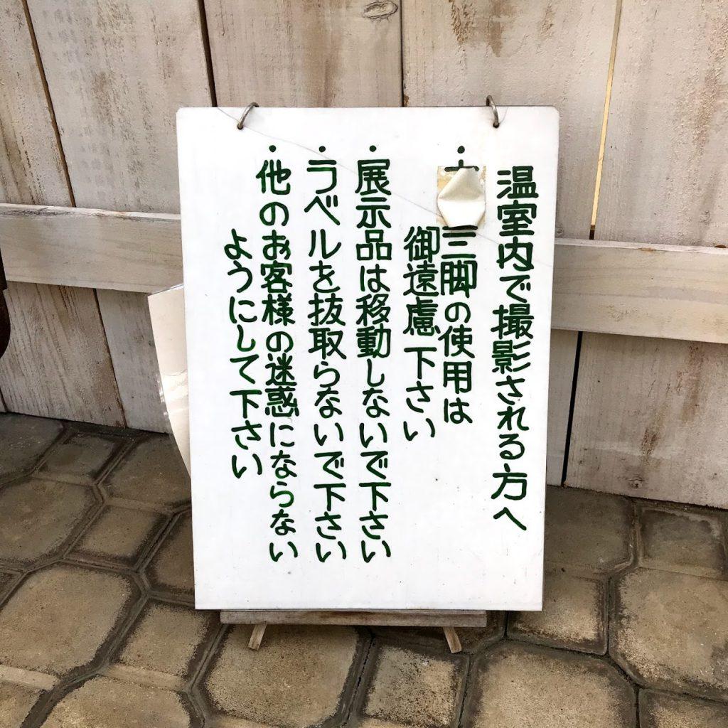 川口グリーンセンター 写真撮影 三脚