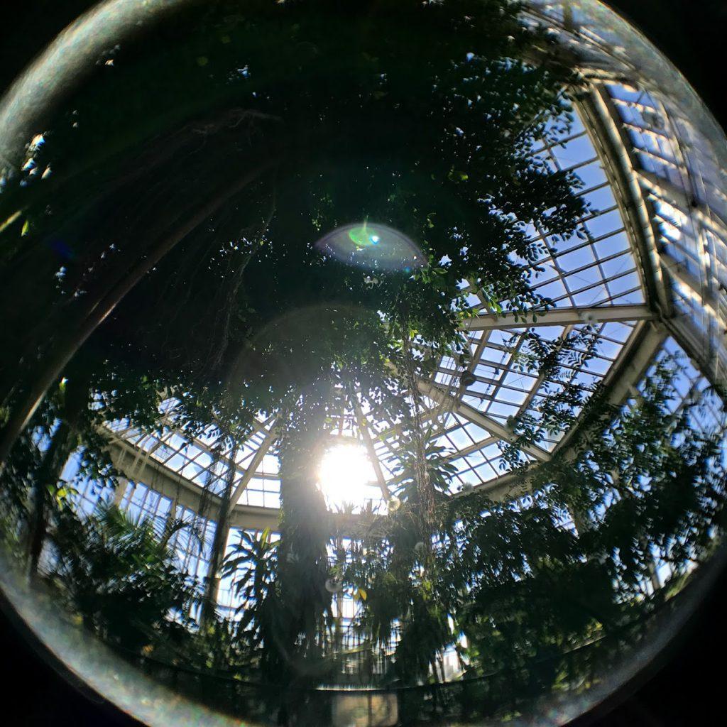 川口グリーンセンター 熱帯温室 八角形