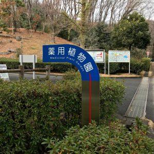 東京薬科大学 薬用植物園 案内板