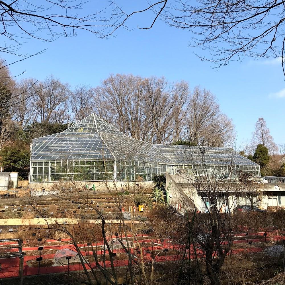 東京薬科大学 薬用植物園 温室