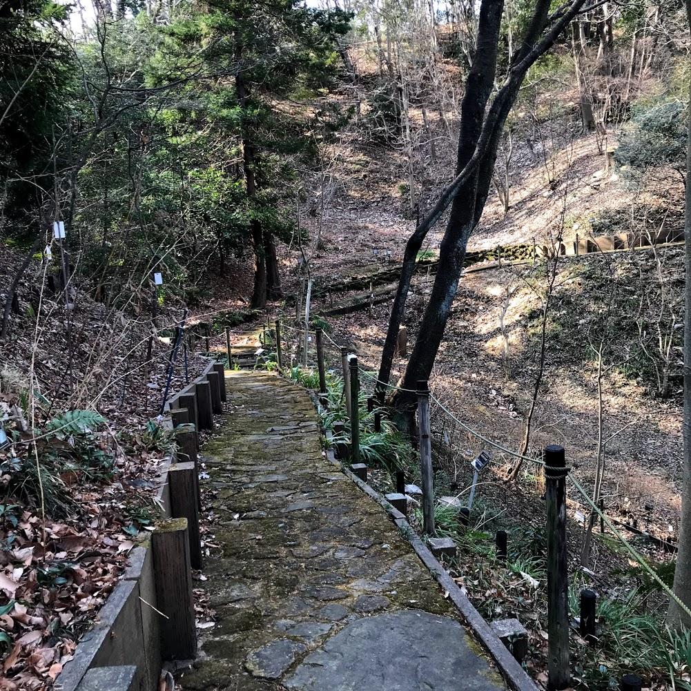 東京薬科大学 薬用植物園