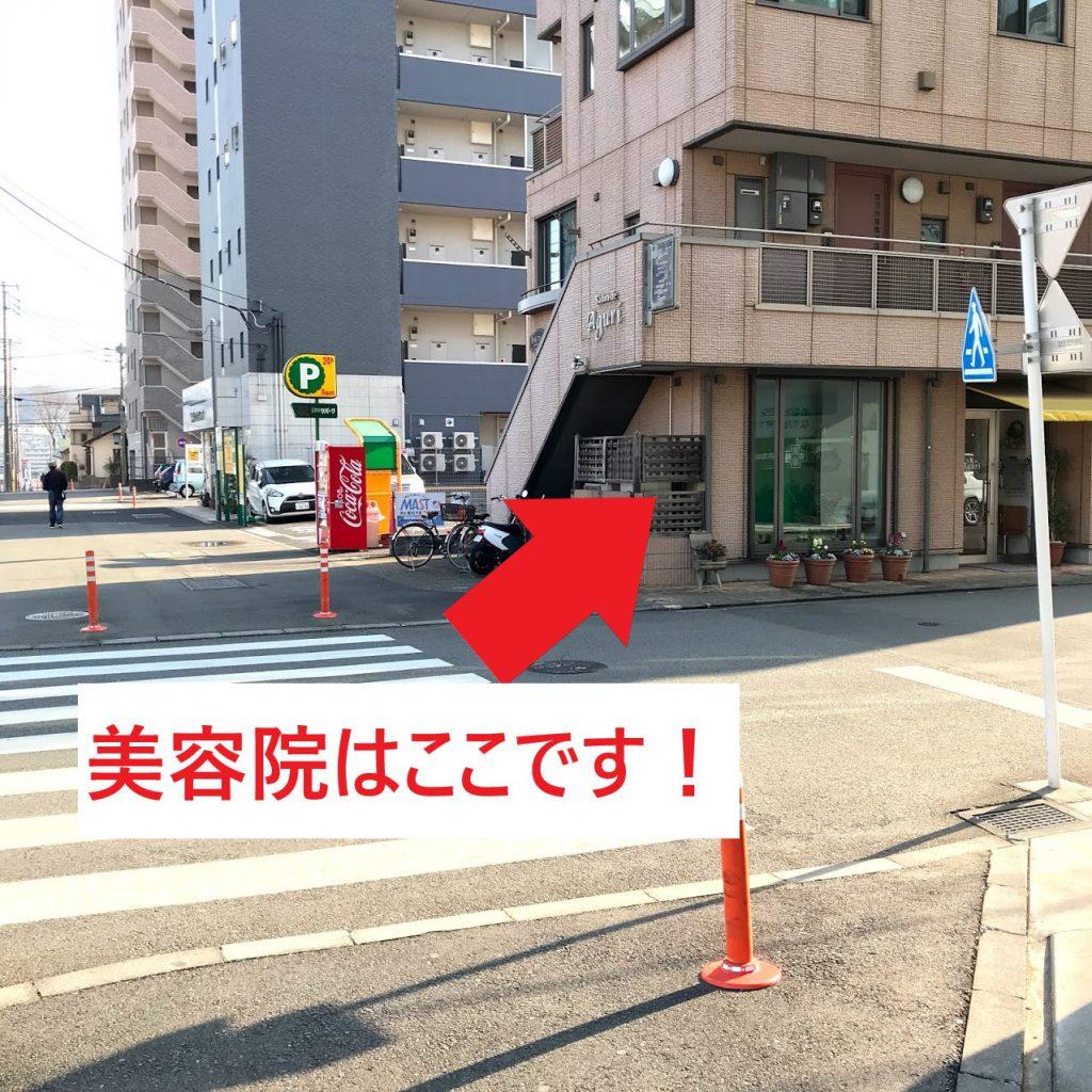東京薬科大学 薬用植物園 バス停 目印