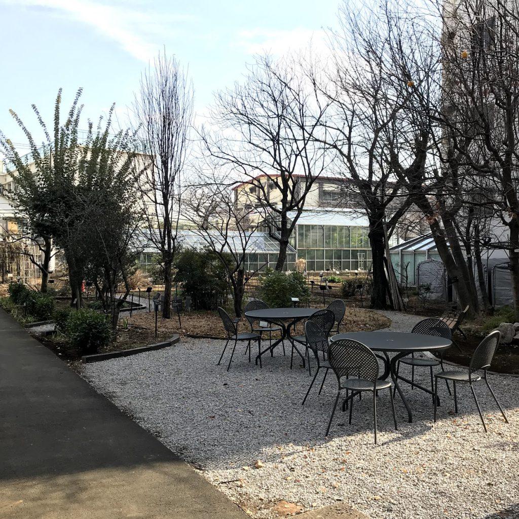 星薬科大学 薬用植物園 屋外