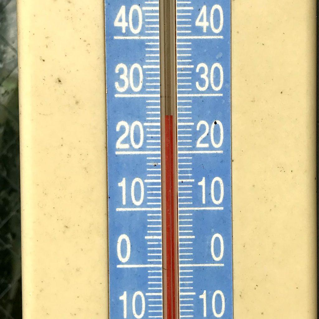 星薬科大学 薬用植物園 温室 温度