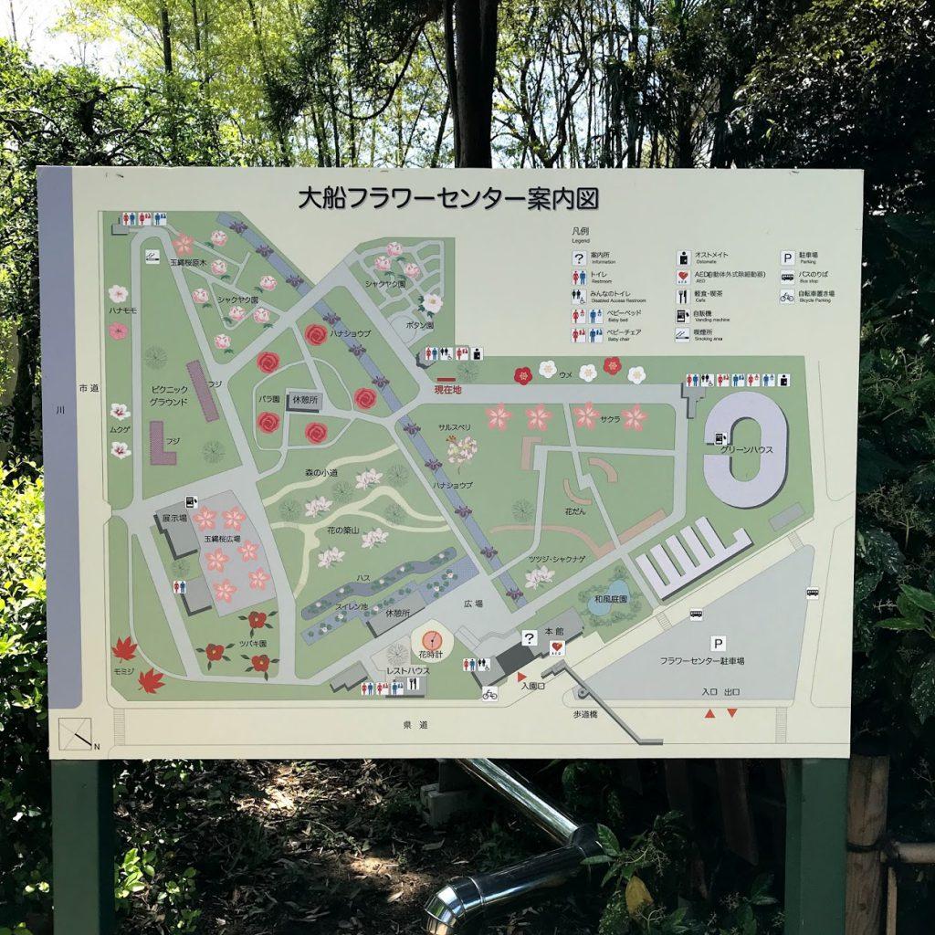 日比谷花壇大船フラワーセンター 地図