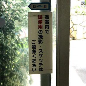 日比谷花壇大船フラワーセンター 撮影お断り