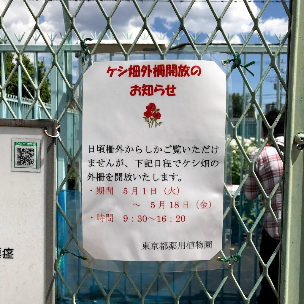 東京都薬用植物園 ケシのパネル展