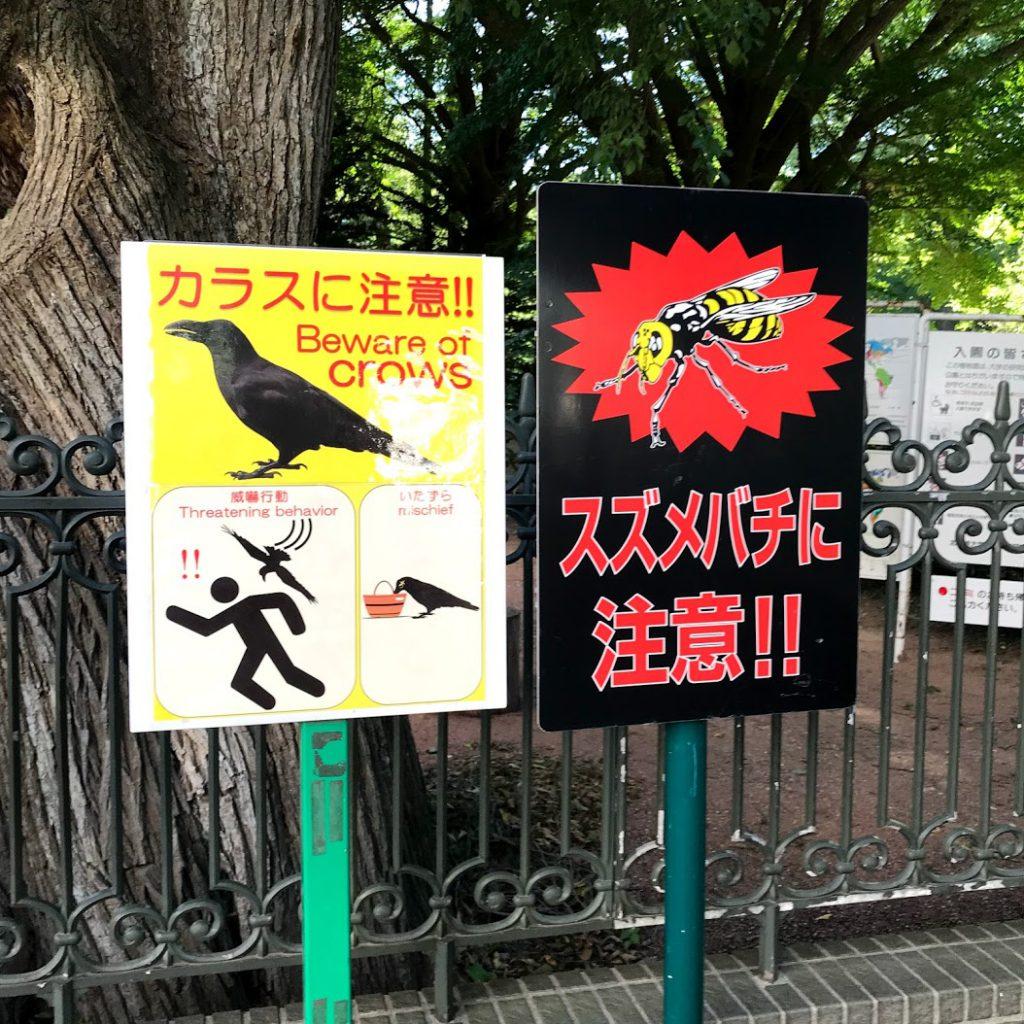 北海道大学植物園 カラスに注意の看板