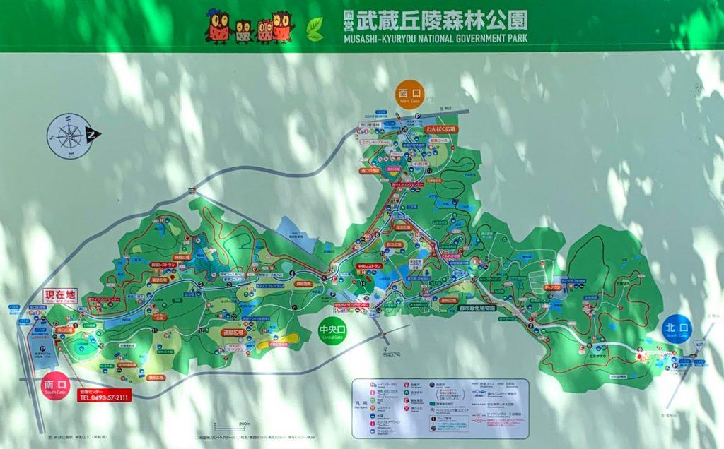 森林公園 園内マップ