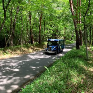 森林公園 園内バス