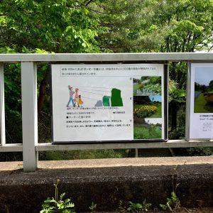 森林公園 ボーダー花壇の説明