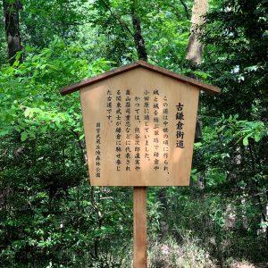 森林公園 旧鎌倉街道がある