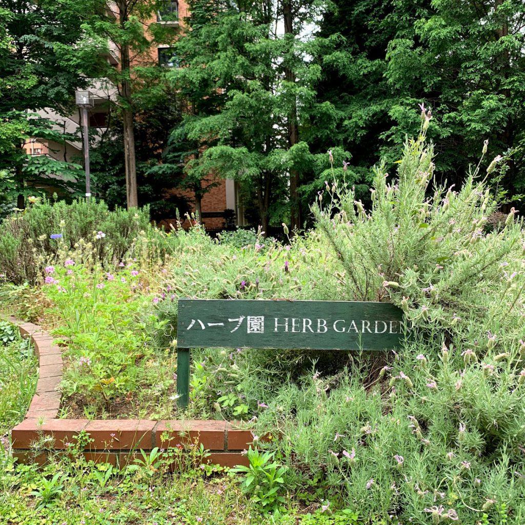 四季の香りローズガーデン ハーブ園