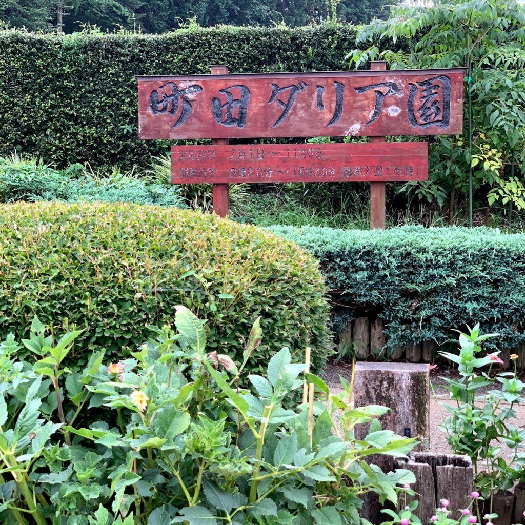 町田ダリア園看板