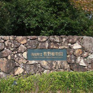 高知県立牧野植物園正門
