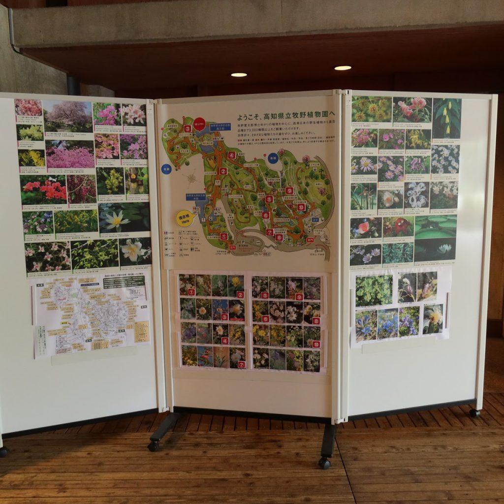 高知県立牧野植物園地図と見頃の花掲示板