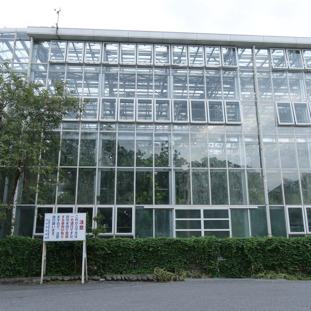 高知県立牧野植物園温室