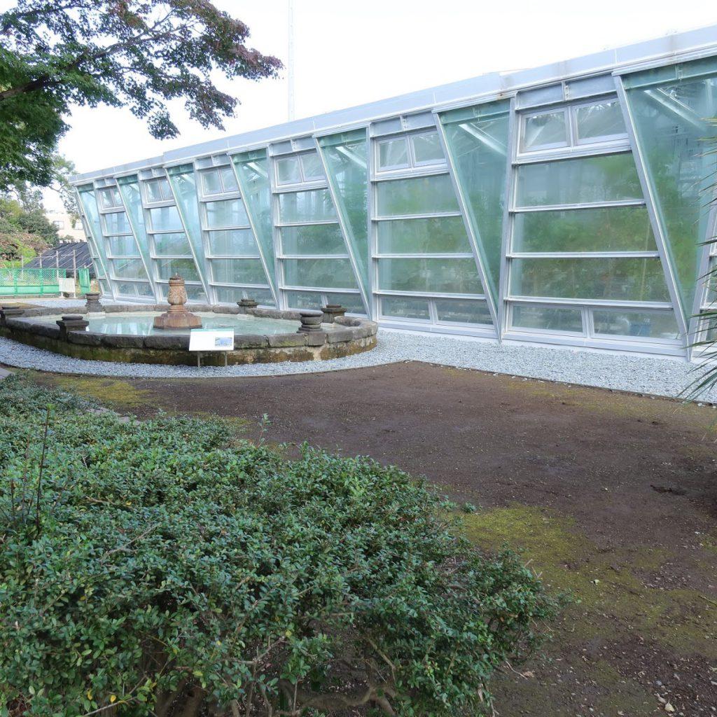 小石川植物園の温室の前の池