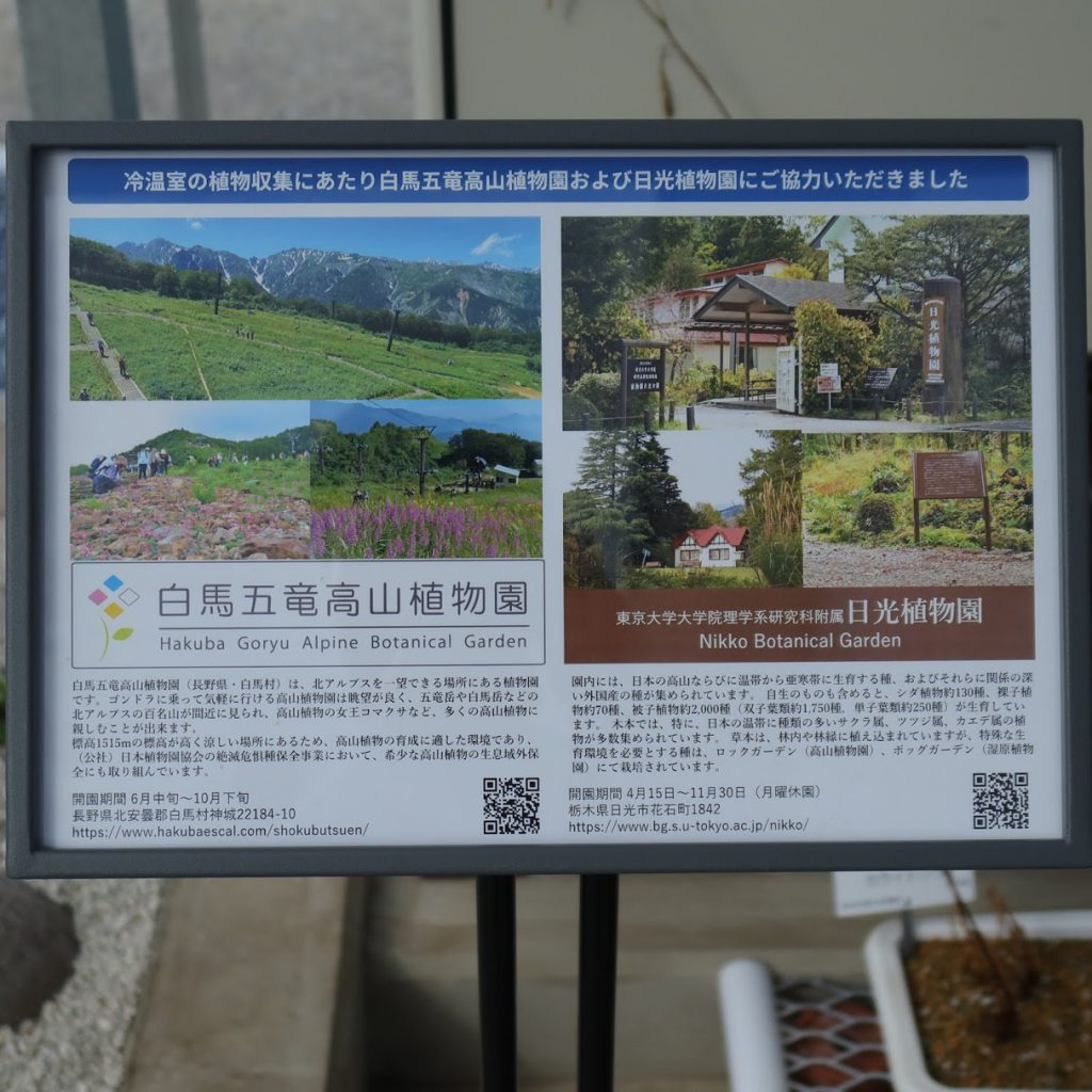 小石川植物園の冷温室